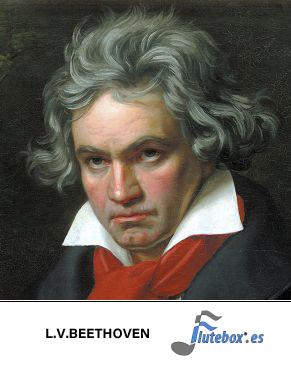 Beethoven-Flute-Flauta-Beatbox