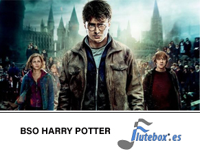 harry-potter-john-williams-Canciones de flauta-Flute-Flauta-Beatbox-Flutebox.es