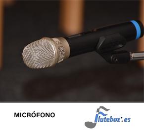 microfono-clases de flauta online-online flute class-Flute-Flauta-Beatbox